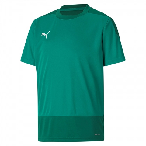 Training Jersey Team Goal 23 Kinder, Puma